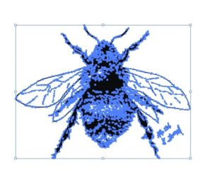 vector graphic view